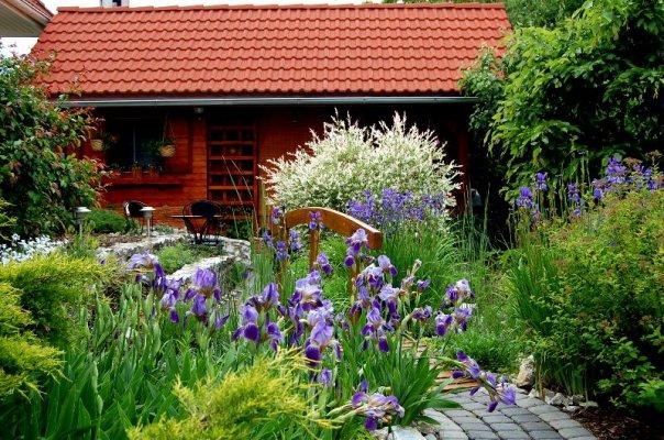 Niečo zo záhrady... - Obrázok č. 1