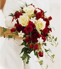 a tou - rudé růže, bílé frézie