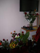 ..kytičky ráno na pokoji... :-)