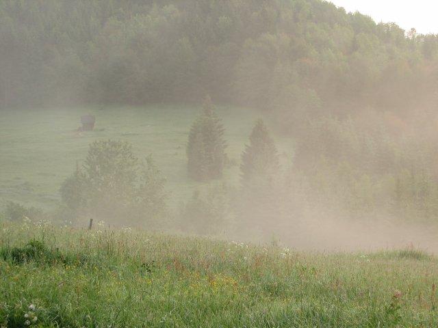 Tinka{{_AND_}}Durko - trosku prirody