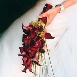 Bride PLUS - Obrázok č. 63