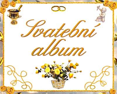 """Lucinda.s - Svatební album, pro zápisky a fotografie ze svatebního obřadu a přípravy k němu, jsem koupila v """"levných knihách"""" za 99 Kč"""