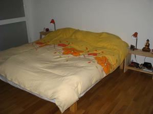 Jak vidno, i ložnice zatím provizorní, se starým zařízením a s nadějí na budoucí nové...