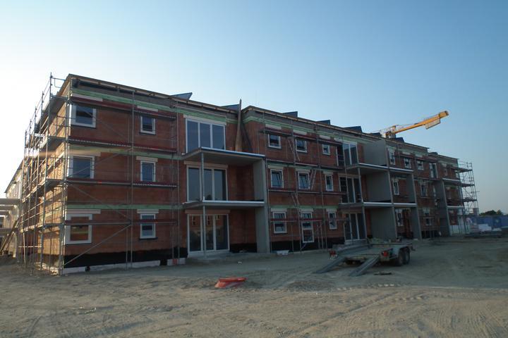 Kittsee-Steinfeldsiedlung 22.5.2011 - stiege 1  v celej krase