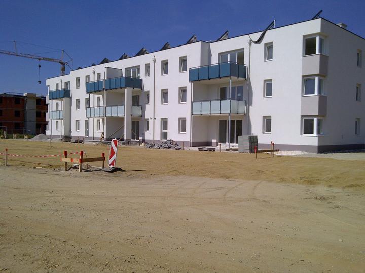 Kittsee-Steinfeldsiedlung 3.9.2011 - Obrázok č. 49