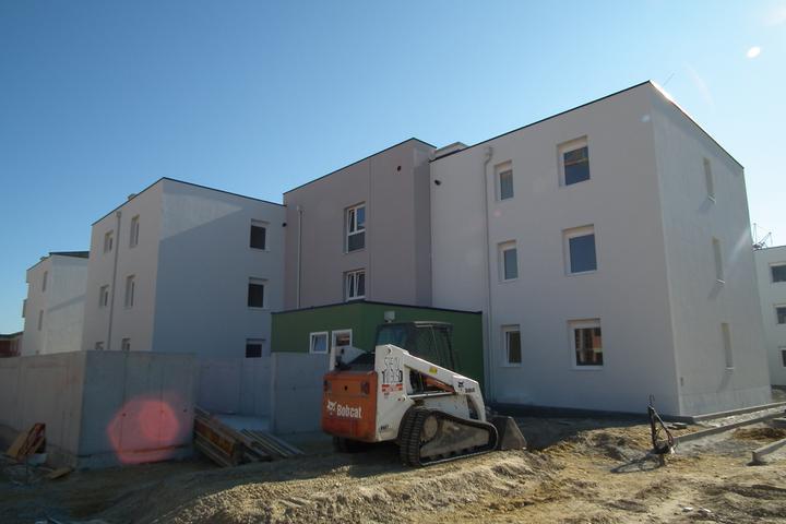 Kittsee-Steinfeldsiedlung 69, 1.10.2011 - Obrázok č. 30