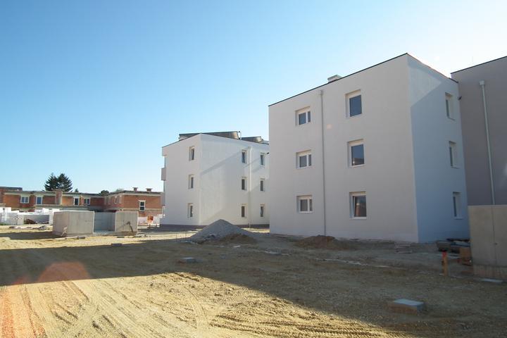 Kittsee-Steinfeldsiedlung 69, 1.10.2011 - Obrázok č. 32