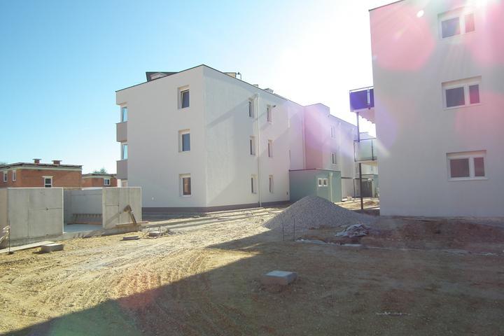 Kittsee-Steinfeldsiedlung 69, 1.10.2011 - Obrázok č. 33