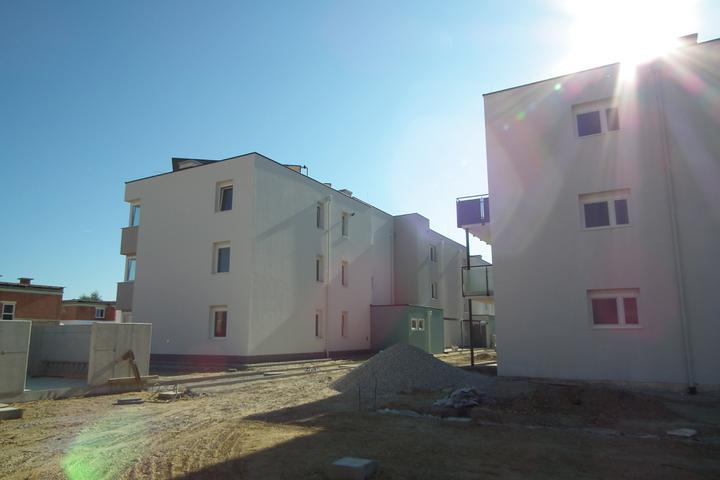 Kittsee-Steinfeldsiedlung 69, 1.10.2011 - Obrázok č. 34
