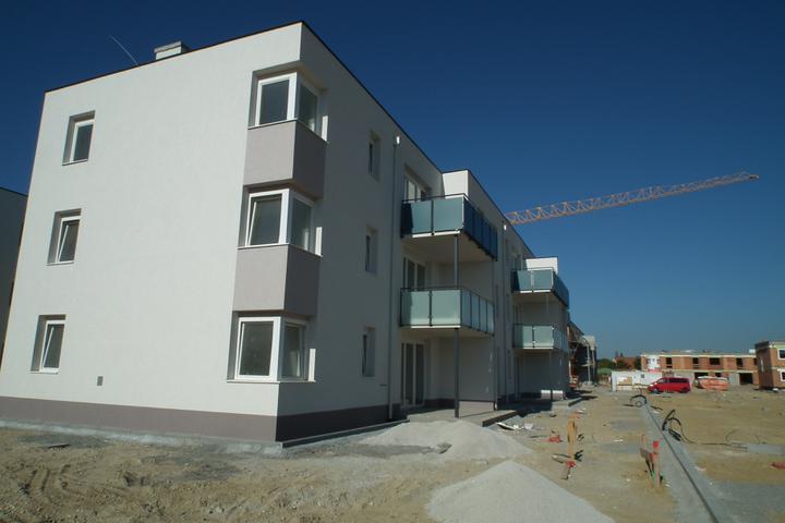 Kittsee-Steinfeldsiedlung 69, 1.10.2011 - Obrázok č. 57