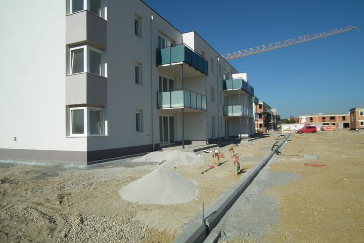 Kittsee-Steinfeldsiedlung 69, 1.10.2011 - Obrázok č. 59