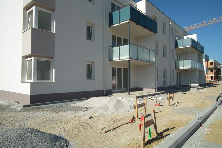 Kittsee-Steinfeldsiedlung 69, 1.10.2011 - Obrázok č. 60