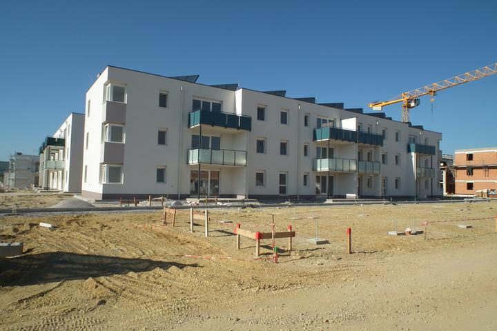 Kittsee-Steinfeldsiedlung 69, 1.10.2011 - Obrázok č. 61