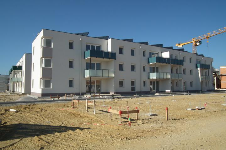Kittsee-Steinfeldsiedlung 69, 1.10.2011 - Obrázok č. 62