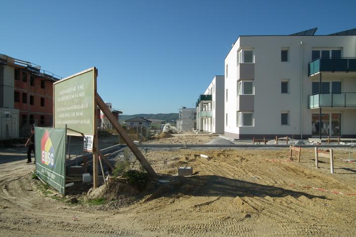 Kittsee-Steinfeldsiedlung 69, 1.10.2011 - Obrázok č. 63