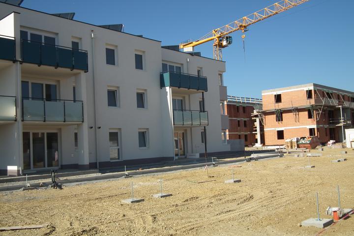 Kittsee-Steinfeldsiedlung 69, 1.10.2011 - Obrázok č. 66