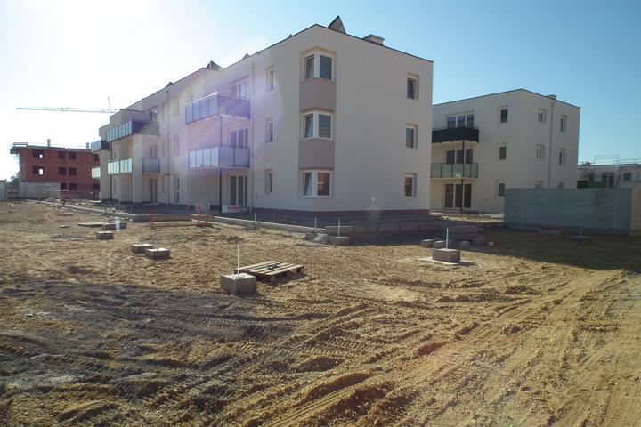 Kittsee-Steinfeldsiedlung 69, 1.10.2011 - Obrázok č. 73