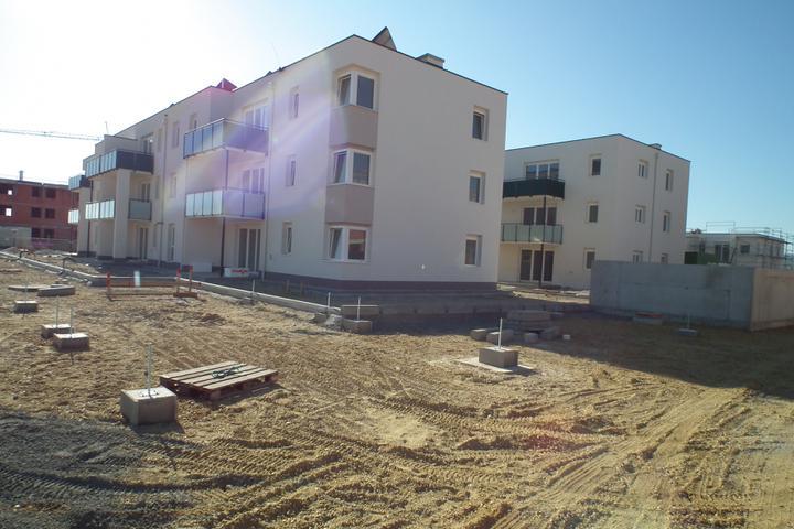 Kittsee-Steinfeldsiedlung 69, 1.10.2011 - Obrázok č. 74
