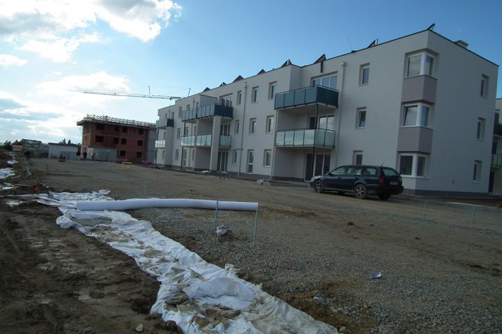 Kittsee-Steinfeldsiedlung 69, 14.10.2011 - Obrázok č. 7