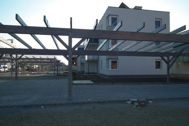 Kittsee-Steinfeldsiedlung 69, 22.10.2011 - Obrázok č. 11