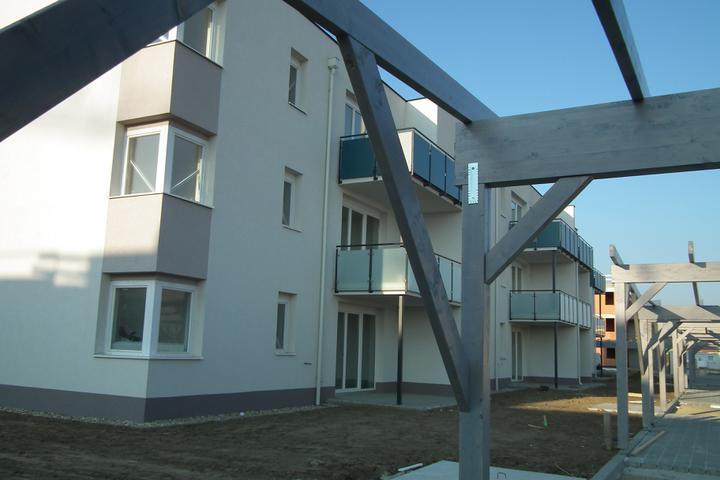 Kittsee-Steinfeldsiedlung 69, 22.10.2011 - Obrázok č. 22