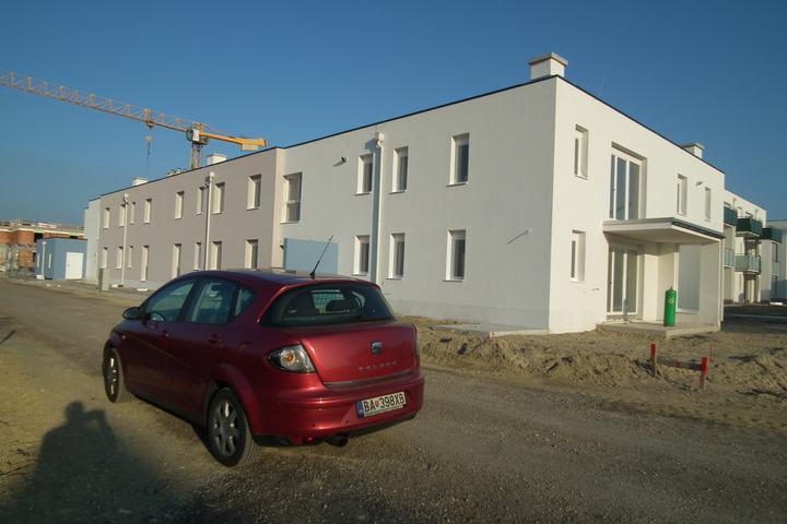 Kittsee-Steinfeldsiedlung 69, 22.10.2011 - Obrázok č. 32