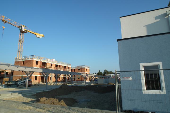 Kittsee-Steinfeldsiedlung 69, 22.10.2011 - Obrázok č. 37