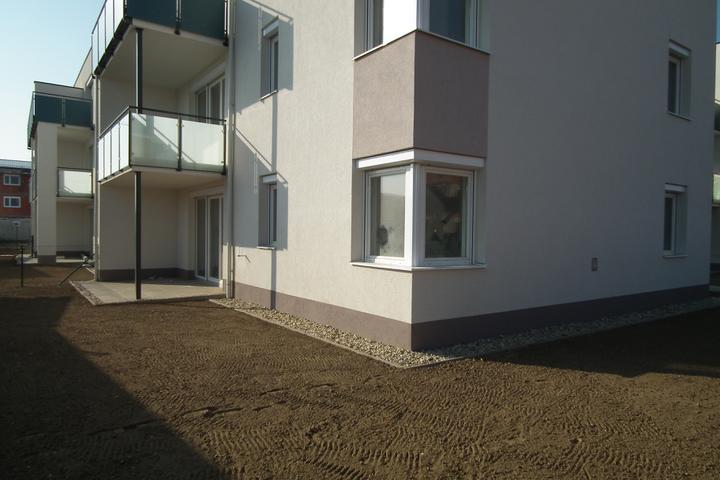 Kittsee-Steinfeldsiedlung 69, 12.11.2011 - Obrázok č. 15
