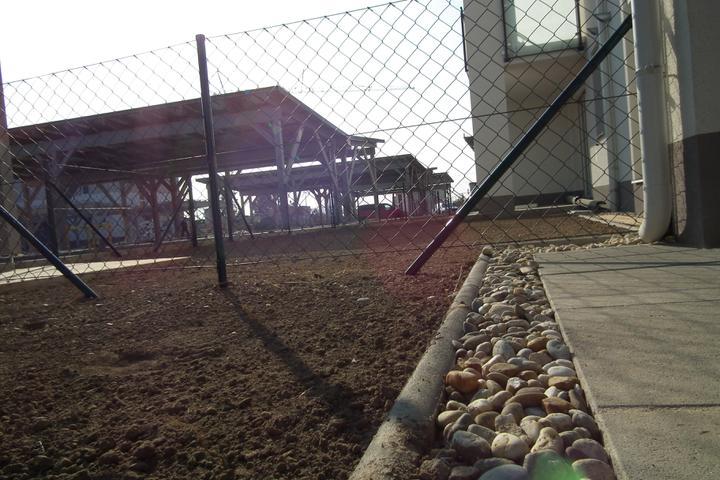 Kittsee-Steinfeldsiedlung 69, 12.11.2011 - Obrázok č. 24