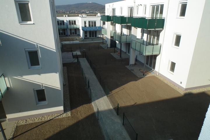 Kittsee-Steinfeldsiedlung 69, 12.11.2011 - Obrázok č. 91
