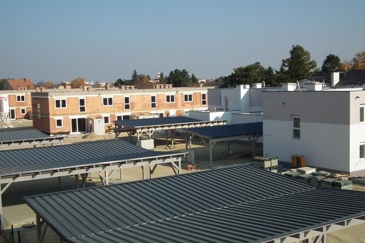 Kittsee-Steinfeldsiedlung 69, 12.11.2011 - Obrázok č. 96
