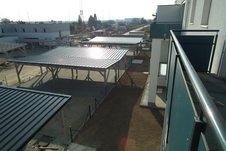 Kittsee-Steinfeldsiedlung 69, 12.11.2011 - Obrázok č. 110