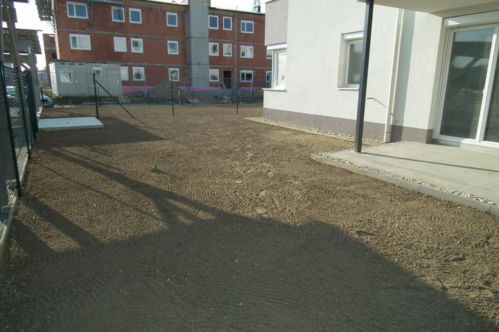 Kittsee-Steinfeldsiedlung 69, 12.11.2011 - Obrázok č. 165