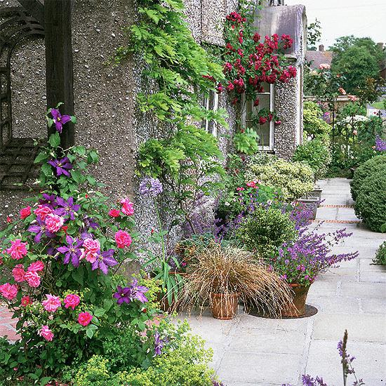 Život na záhrade - Obrázok č. 37