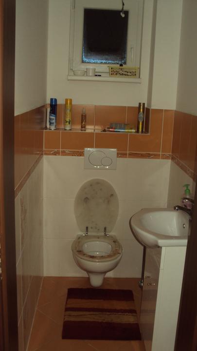 """Zařizujeme - wc a koupelnu nám rádoby """"odborníci"""" řádně po.....ale slouží :-)"""