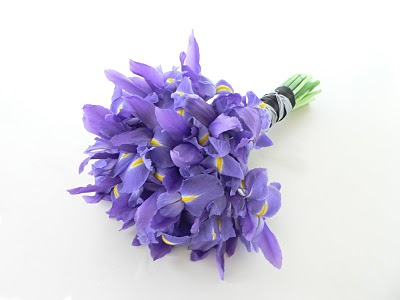 Co kdy kvete - Iris