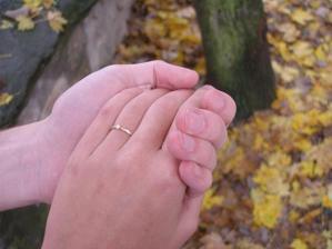 8. listopadu 2008, Kutná Hora