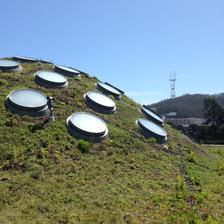 živá strecha budovy Academy of science, pod touto kupolou sa nachádzajú trojposchodový sklenník. Na každom jeho poschodí je imitovaná iná klíma tropického prostredia. Pod druhou kupolou sa nachádza najväčšie digitálne planetárium na svete! :)