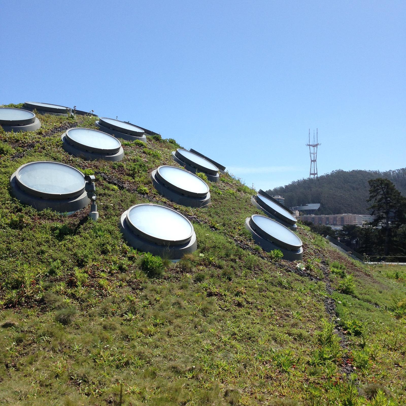 """""""If you can dream it, you can do it."""" - živá strecha budovy Academy of science, pod touto kupolou sa nachádzajú trojposchodový sklenník. Na každom jeho poschodí je imitovaná iná klíma tropického prostredia. Pod druhou kupolou sa nachádza najväčšie digitálne planetárium na svete! :)"""