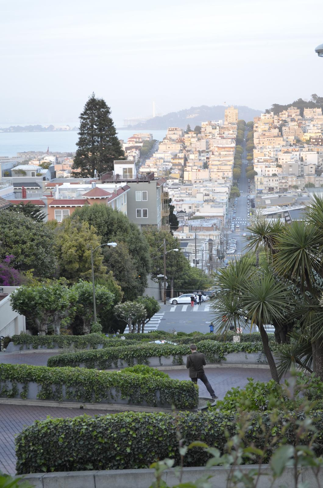 """""""If you can dream it, you can do it."""" - pohľad z Lombard street :)"""