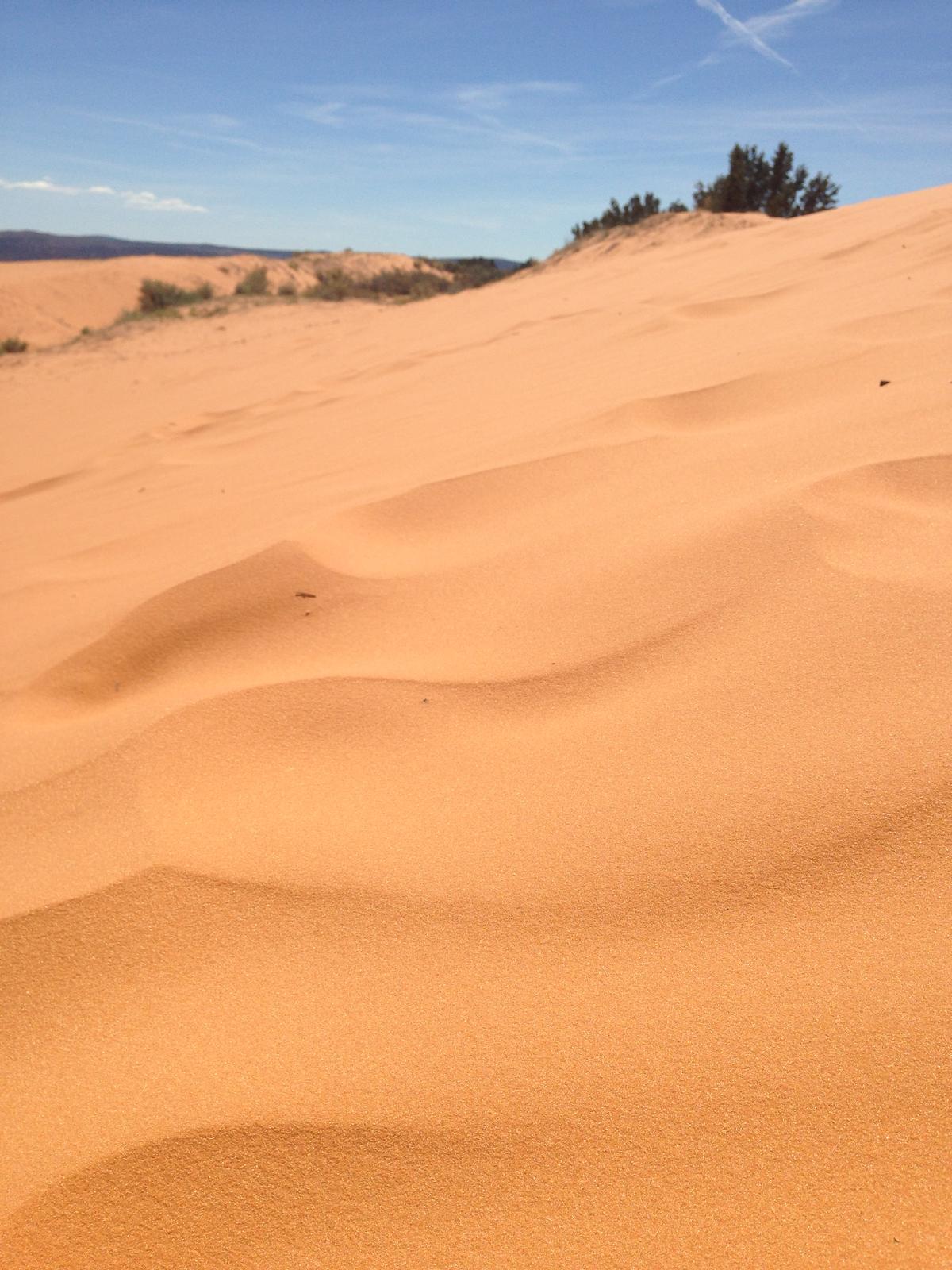 """If you can dream it, you can do it."" - Coral Pink Sand Dunes - tma kde platí ""kde sa piesok lial..."" ten piesok bol neuveriteľný!"
