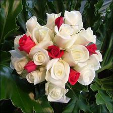 ...alebo takato daka + ruzove ruze. :) A len ruze.