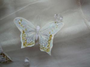 detail motylika