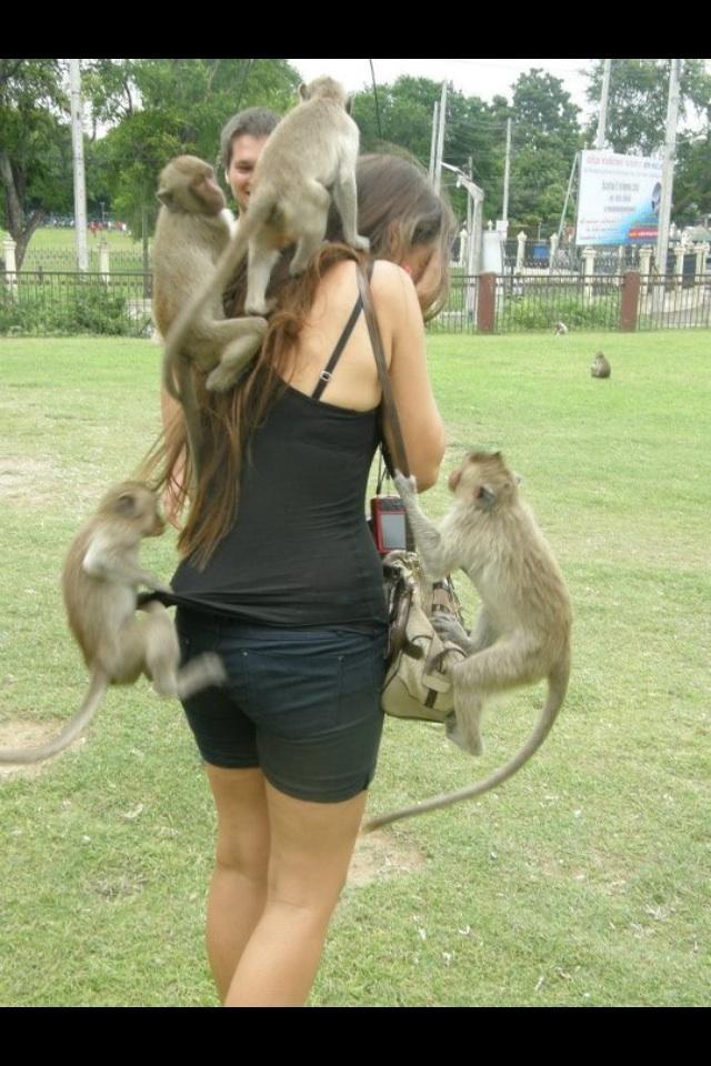 Do thajska som isla... - Obrázok č. 3