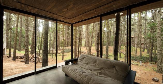Bývanie v lese - Obrázok č. 11