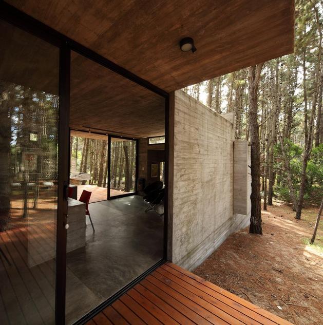 Bývanie v lese - Obrázok č. 13