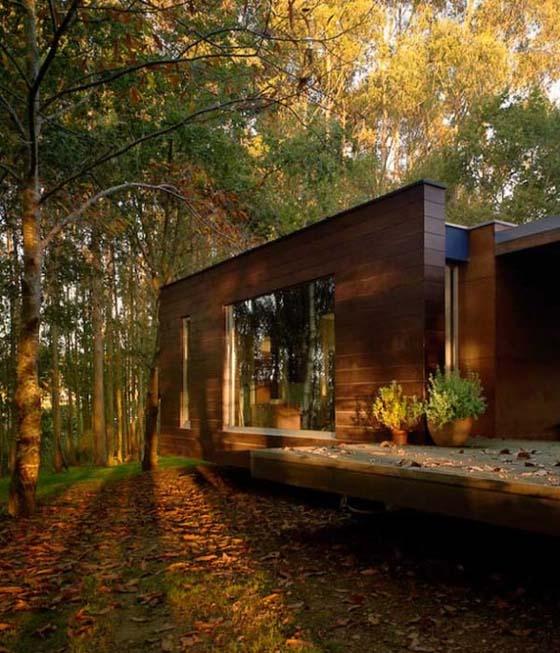 Bývanie v lese - Obrázok č. 4