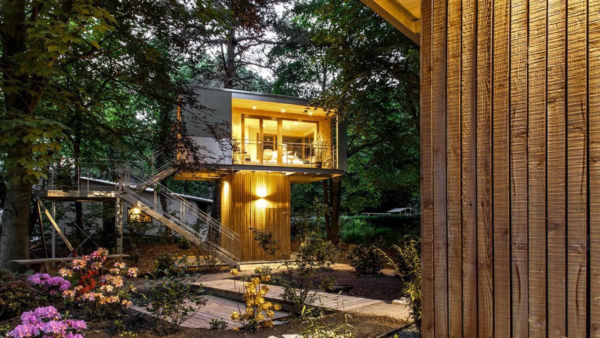 Bývanie v lese - Obrázok č. 29