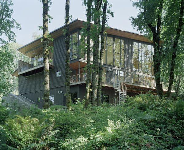 Bývanie v lese - Obrázok č. 33