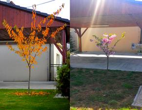 Oktober (teraz) - april .... tohto roku celkom slusny prirastok :)